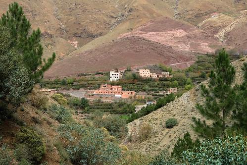 IMG_1013 Morocco 2016   by Noodlefish