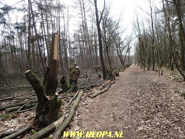 2018-03-17 Ankeveen 40 km (62)