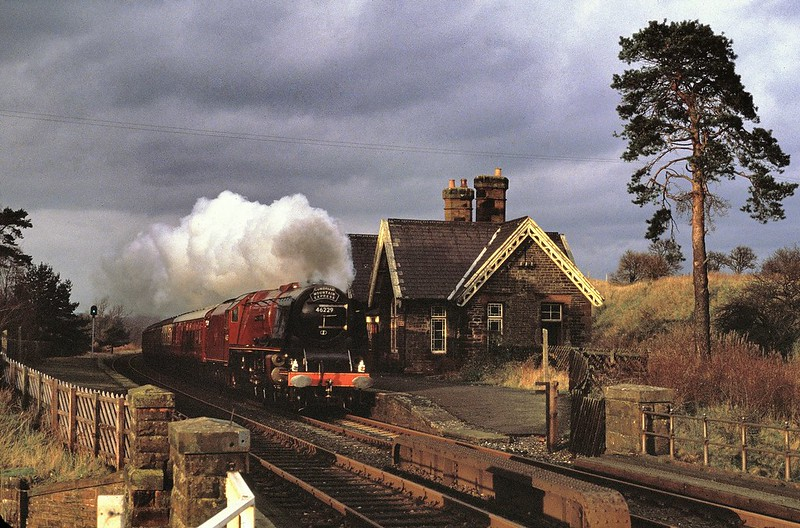 In an unexpected burst of light, Duchess of Hamilton heads past the closed station with a southbound CME on 8/12/1984. I have tried a crop excluding the tree but decided to leave it in ! Copyright David Price No unauthorised use