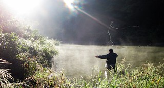 Fly fishing muskies   by mattstansberry