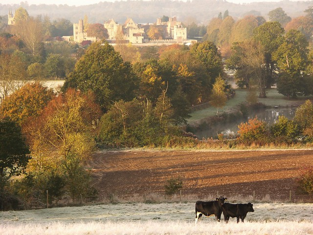 Penshurst Place in Frost