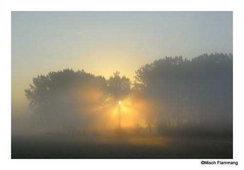 russange sunrise sonnenaufgang leverdusoleil landscape nature natur landschaft paysage nikon1 nikon1v1 light outside trip