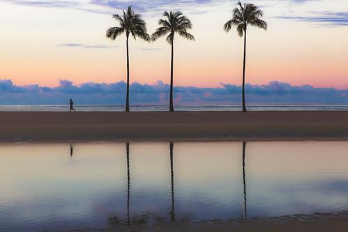 sunrise themorningrunhawaiistyle waikiki beach hawaii reflections tranquil palmtrees cloudformations 5am exotic summer darrencowley darrencowleyphotography