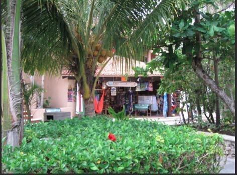 Puerta-adventura-mexico