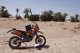 KTM 640 adventure, Sand and Palm Trees | by KelvynSkee