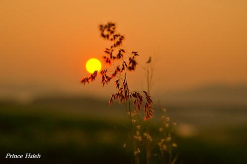 sunrise river sony taiwan 南投 taichung 日出 a850 台中市 晨彩 貓羅溪 mauluo