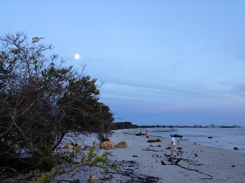 Waxing blue moon | by Erin *~*~*
