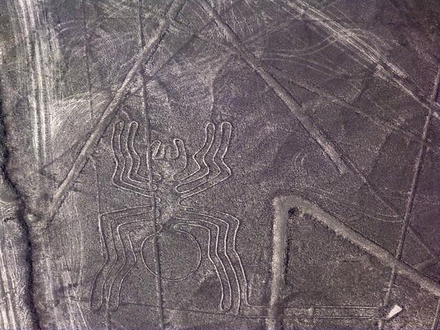 Araña (Líneas de Nazca en Perú)