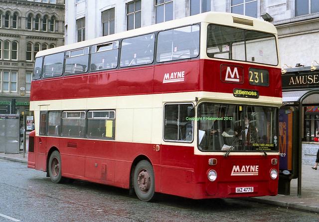 Mayne 5 (IAZ4775)