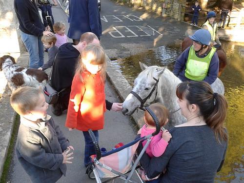 Meeting Bourton Horses