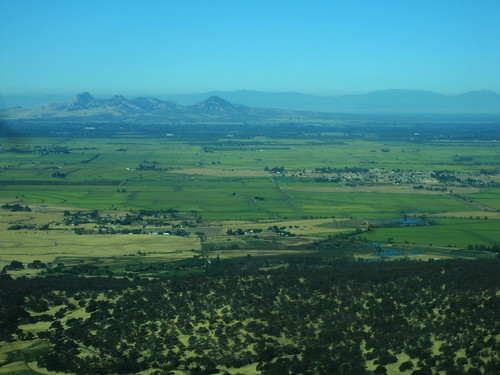 Sutter Buttes and Rice Paddies