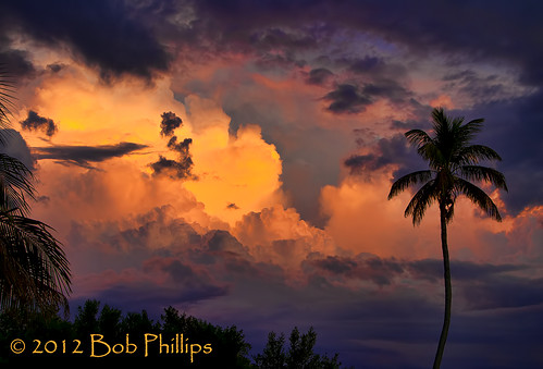 sunset clouds palmtrees pineisland pineland tarponlodge