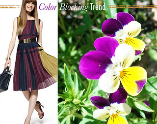 Colorblocking-by-Nature-Purple-Yellow | by StarletStarlet