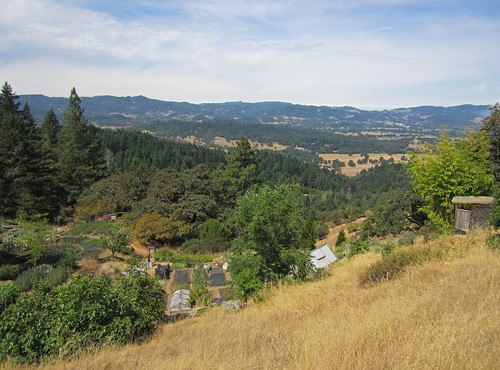 california farming 2012 willits mendocinocounty biointensive ecologyaction