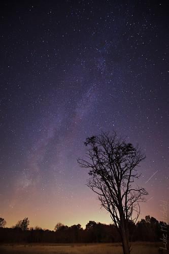 park ohio tree nature night stars landscape outdoor earth space horizon galaxy astrophotography heavens lightpollution milkyway comos oakopenings