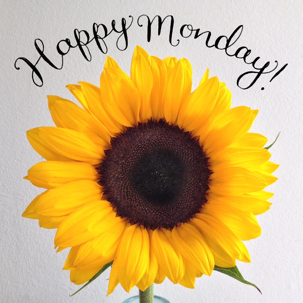 Happy Monday! | Alexandra Snowdon | Flickr