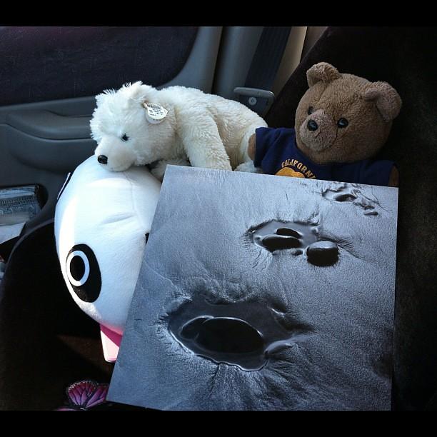 #kvpmove : My bears protecting art. Daly City-bound