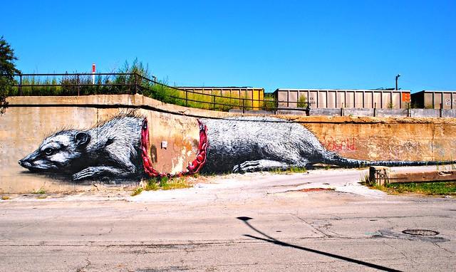 Half eaten carcass by artist ROA