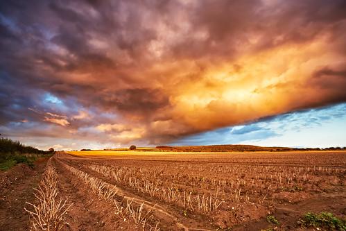 uk sunset england sky storm night clouds rural landscape farm farming crop land fields crops agriculture malton northyorkshire agricultural stubble canon1740f4 sandylane wintringham canon5dmk3 markmullenphotography