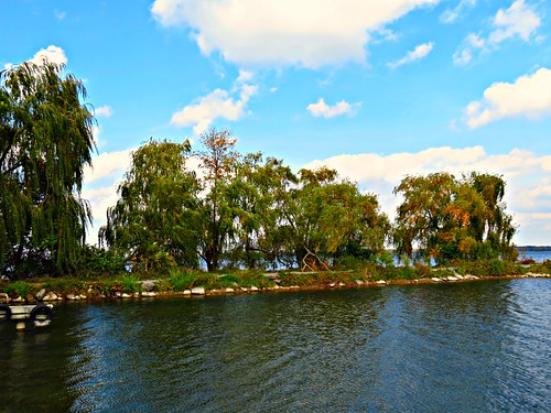 sibbaldpointprovincialpark lakesimcoe ontario canada niceasitgetslevel1