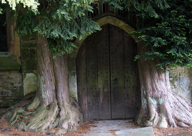 The north door of the Church of St Edward, Stow-on-the-Wold, Gloucestershire, England, flanked by yew trees