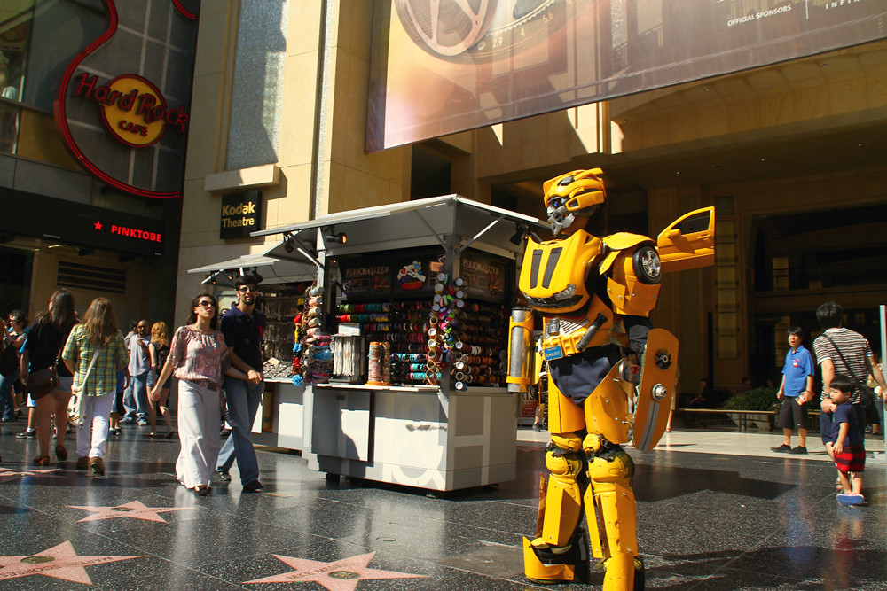 A Little Bit of Everything in Los Angeles, bumble bee