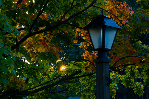 autumn ohio sun tree fall leaves sunrise geotagged nikon raw nef seasonal foliage cs5 canalfultonohio d3s starkcountyohio nikongp1 nikkor24120f4vr