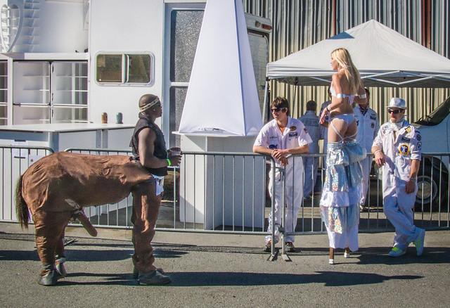 Encounter with a Centaur
