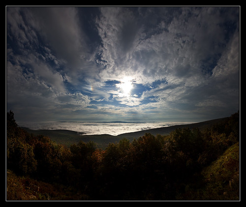 trees light sky sun mist fog sunrise rocks wv westvirginia valley rays sleepycreek cacaponstatepark morgancounty