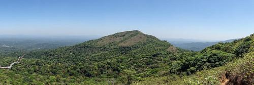 arbres montagnes paysage forêt végétation kabbinakad karnataka inde ind
