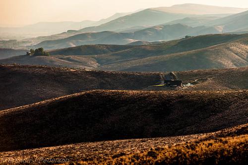 ranch morning mist sunrise washington farm september hills prosser 2012 culinaryfool 0923 2470mm28 brendajpederson