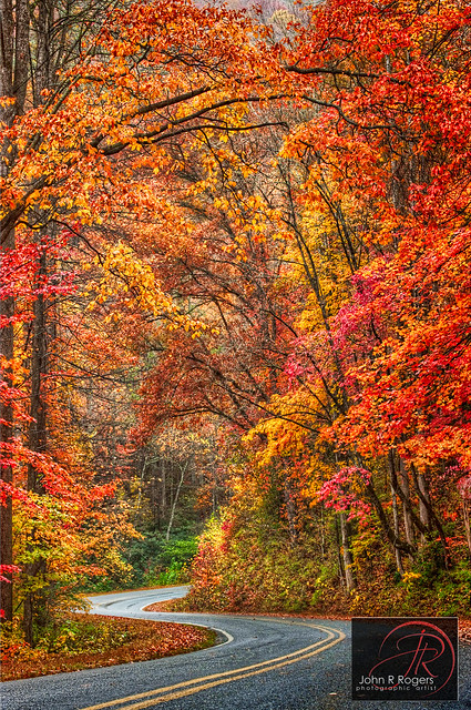 Winding Road to Autumn