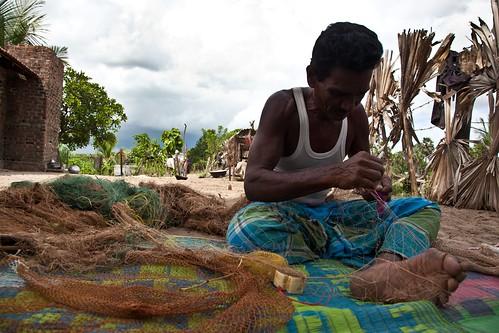 Cepa Elders Lot 2-34Sharni Jayawardene