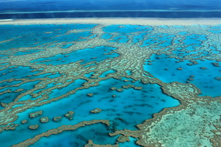 great-barrier-reef | by FarbenfroheWunderwelt