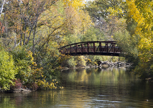 park city bridge autumn trees orange fall leaves yellow river gold footbridge michigan annarbor utata gallup huron parkermill thechallengefactory