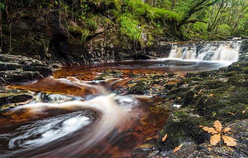 wales water rapids waterfall rocks moss uk landscape green trees woods leaf fall autumn