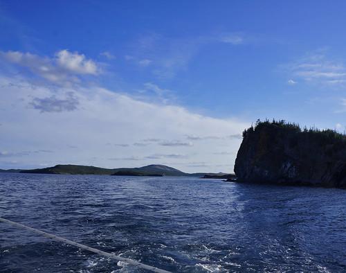 trinitybay newfoundlandandlabrador dildoislandadventuretours