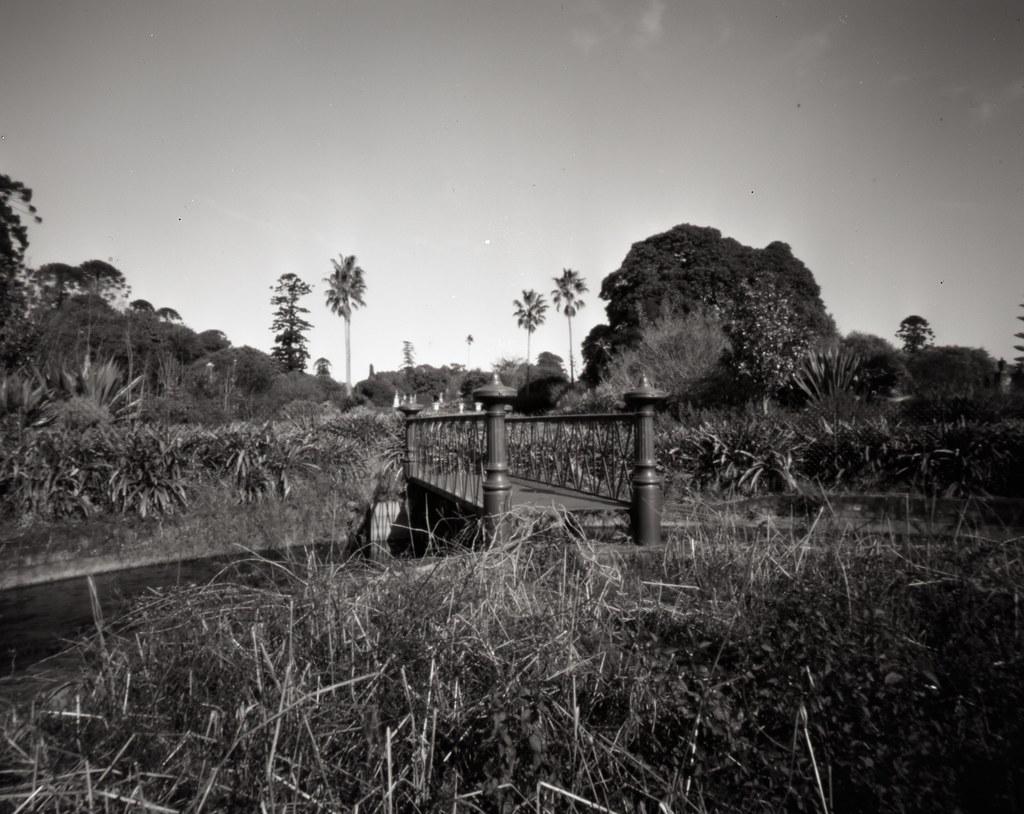 Pont - Rookwood, NSW.