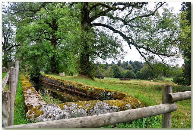 Bassin - Saint-Brisson (Nièvre)