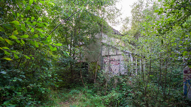 Bridges Wood House