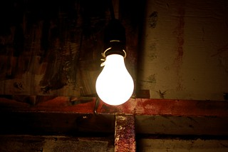 tree house lightbulb | by tjHmmer