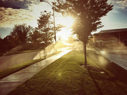 morning sunrise sprinklers snapseed