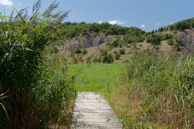Mison, Lac de Mison, Knuppelbrug door rietveld, met zicht op afgraving