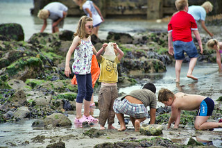 children playing in rock pools | by Steve Slater (used to be Wildlife Encounters)