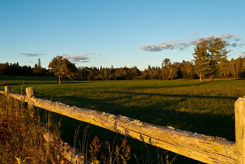 light sunset fall field yellow fence shadows maine september harborside 2012 caperosier