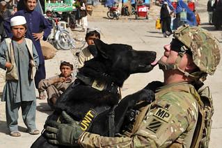 Dog bonding | by The U.S. Army