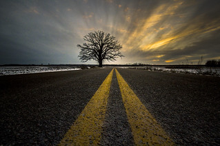 Burr Oak Road to Nowhere | by PompatusOfLove