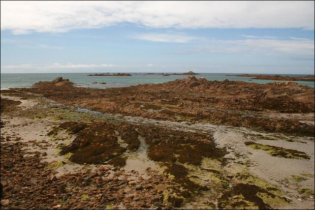 Vazon Bay