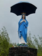 do, 20/09/2012 - 08:09 - 075. Vierge au  Parasol, Réunion