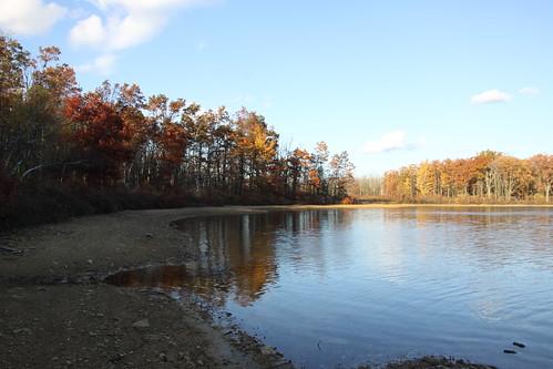 trees sunset lake reflection fall leaves auumn